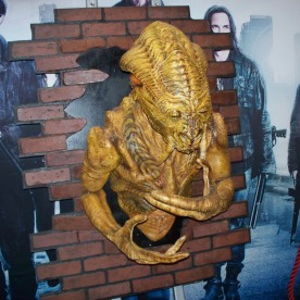 "One of the ""Skitter"" creatures from Falling Skies."